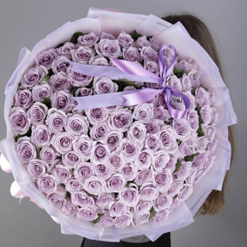 100 stems Purple Roses