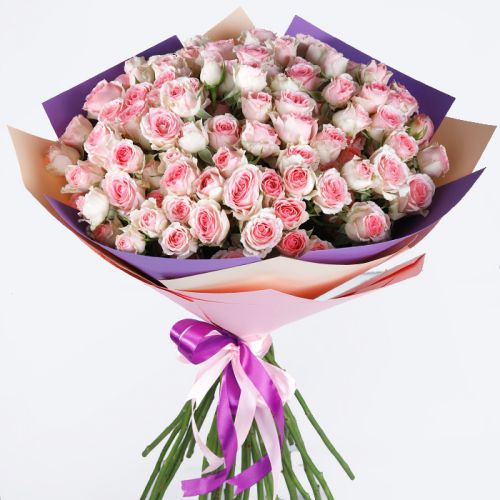 20 Pink Spray Roses