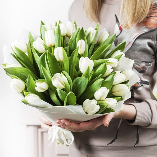 25 White Tulips in Bouquet