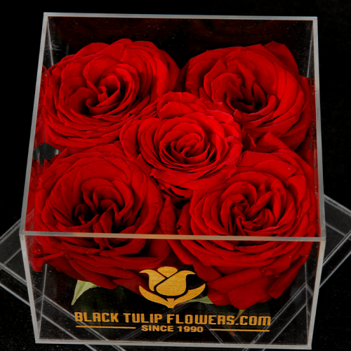 5 Red Roses In An Acrylic Box