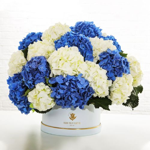 Box Of Blue and White Hydrangeas