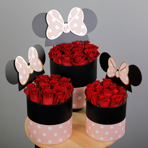 Box of Lovely Minnie
