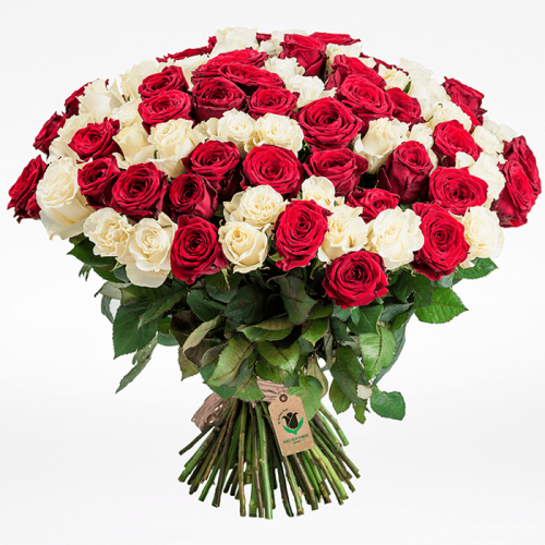 Bunch of red and white roses