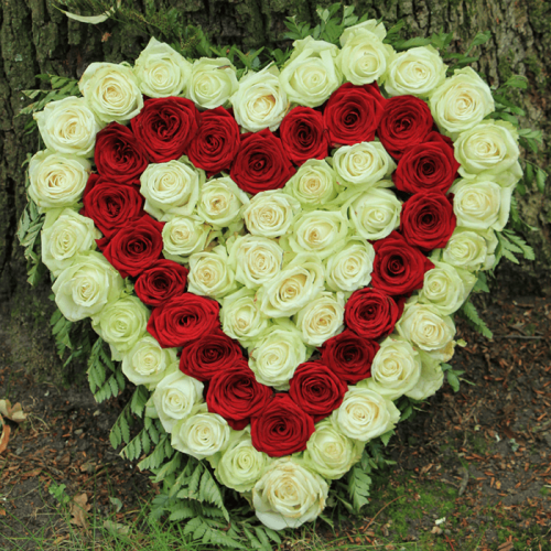 Heart Shape Red and White Flowers
