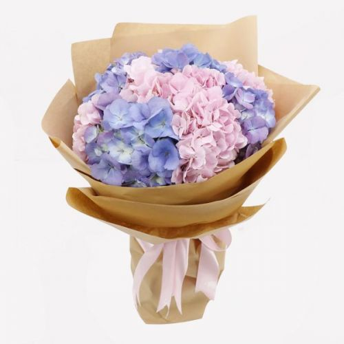 BUNCH OF PINK & PURPLE HYDRANGEAS