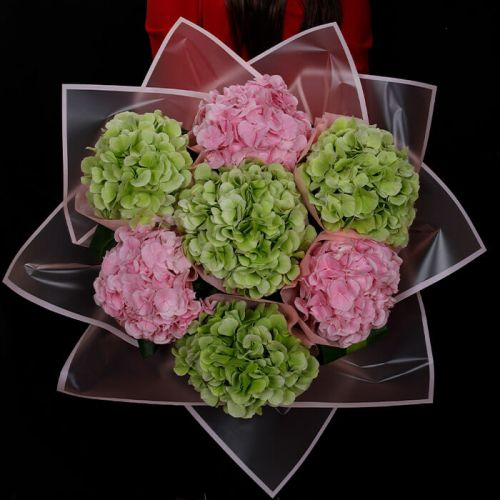 Pink and Green Hydrangeas in a bouquet for all occasions like Love and Romance, Birthdays, Congratulations.