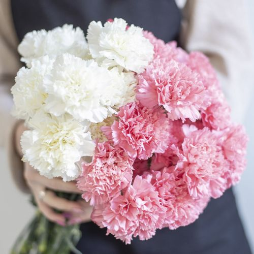 40 stems white & pink carnation