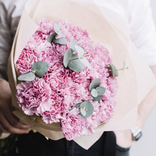 Pinky Carnations