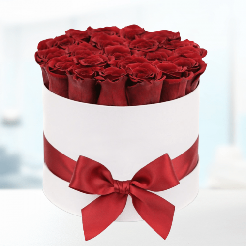 Red Roses in White Box
