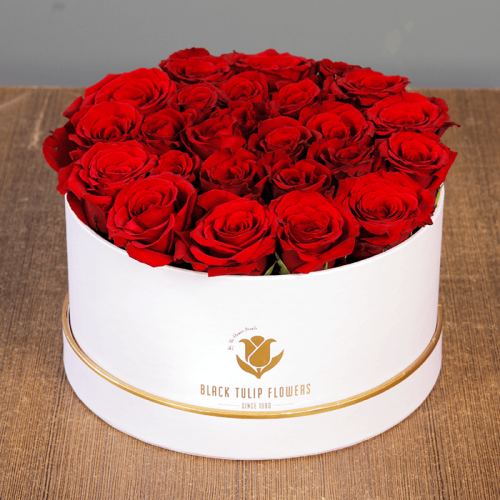 Red Rose in White Box