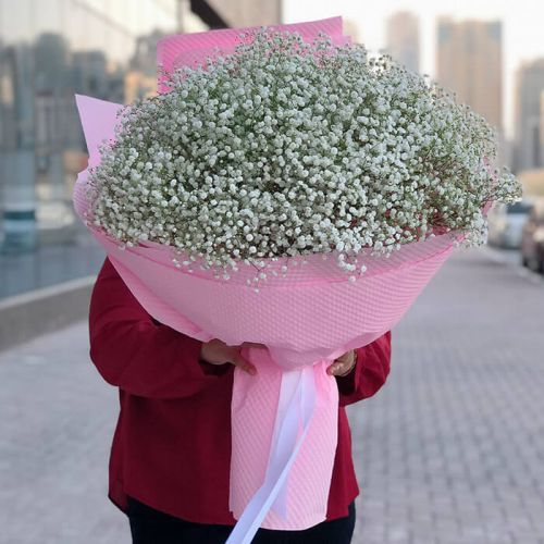 Gypsophila Hand Bouquet for all occasions.