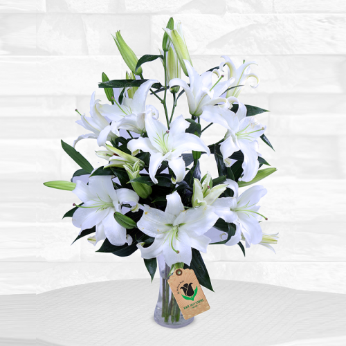 Wonderful Lilies