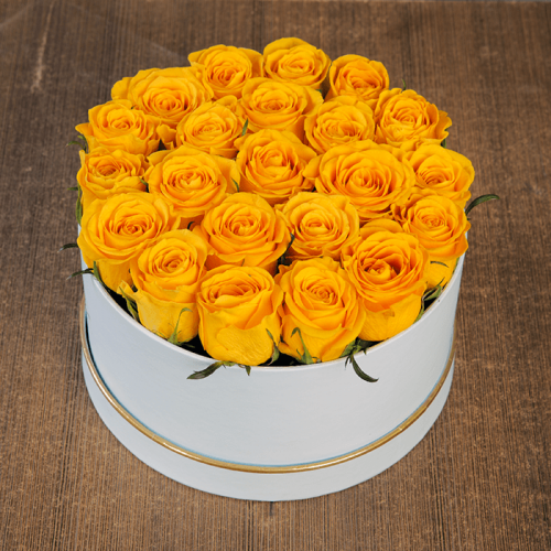 Yellow Rose in White Box