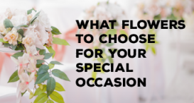 What Flowers to Choose for Your Special Occasion