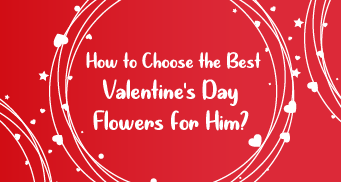 How to Choose the Best Valentine's Day Flowers for Him?