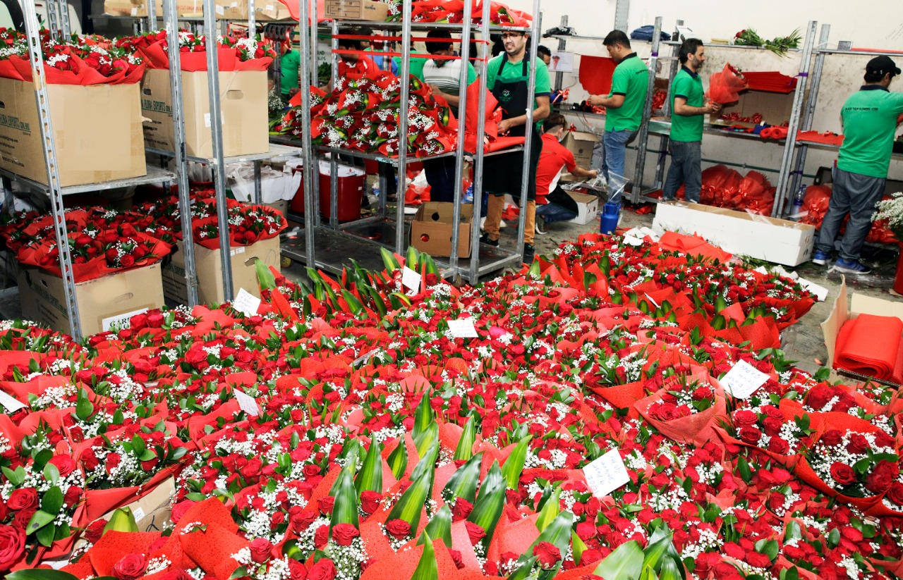Valentine's Day in UAE: Where will your rose be coming from?